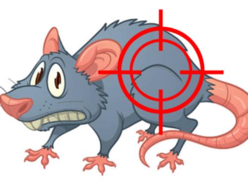 Concurso fotográfico «Cazadores de (e)-ratas»